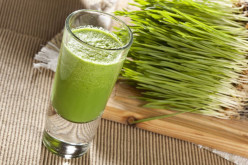 How To Grow Wheatgrass Guide