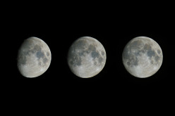 Symptoms during the Moon Cycles