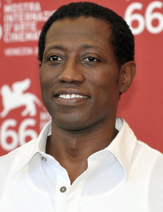 The actor, Wesley Snipes was born in Orlando, Florida.  Snipes is most famous for his role as the Marvel Comics character Blade in the Blade film trilogy.  He has been practicing martial arts since he was 12 years old.