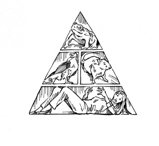 Vampire Food Pyramid