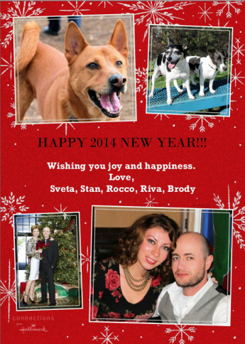 2014 greeting card with our doggies!