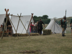 The Role of Summer Trading in Viking Cities