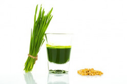 Manual Wheatgrass Juicer, getting the last drop?