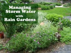 Rain Gardens - Nature's Water Filters
