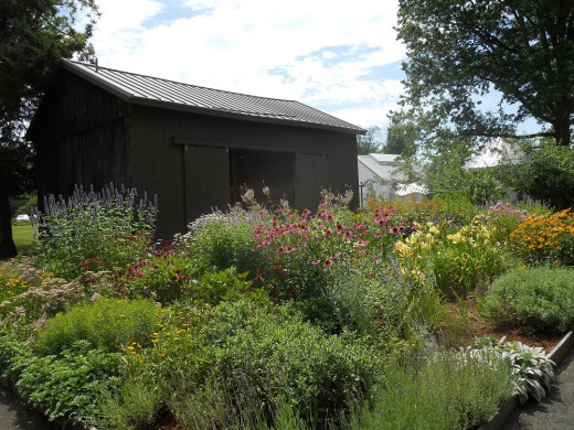 Gardens At Florence Griswold