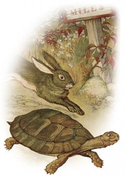 Flash Fiction: Mr. Hare and Mr. Tortoise
