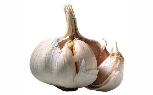 Garlic for warts