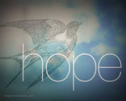 O Bird of Hope. A Sonnet, to Deb Hirt, for Her Deep Love of Birds And Nature