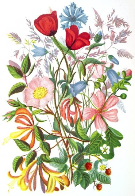 1879.  I thought this was a very lovely and colorful piece of art.