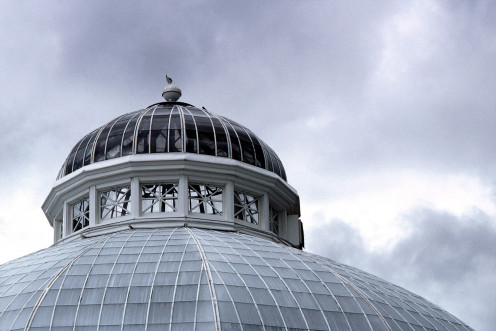 The top of the Palm House at Allan Gardens