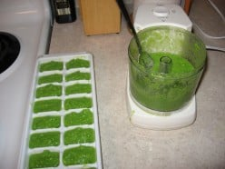 Pureed peas in ice cube tray