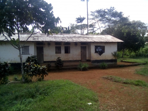 Typical housing at hospital compound