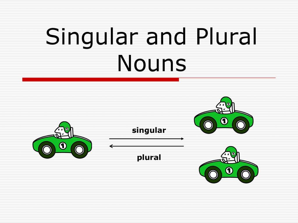 Noun-Number : How to Make Plural Nouns? : Examples u0026 Quiz