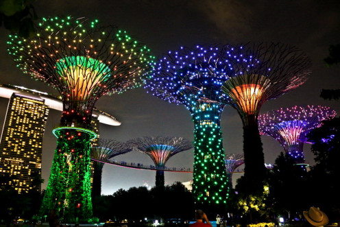 Singapore super tree LED lit up show and sky walk on the bridge attaching all the trees