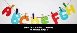 What is a Subject? | Types of Subjects | Examples & Quiz