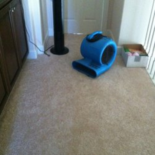 Fans accelerate the  drying process, preventing the onset of water stains!