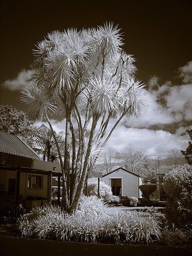 http://www.flickr.com/photos/josefstuefer/3128099950/