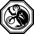 2016 Is the Year of the Red Fire Monkey