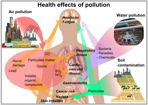 Pollution is the introduction of contaminants into the natural environment that cause adverse change.