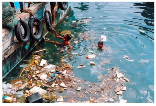 The garbage dumped in the ocean every year is roughly around 14 billion pounds. Plastic is the major constituent.