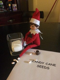 New Elf On The Shelf Ideas