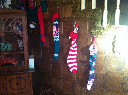 Jingle is checking out the stocking.