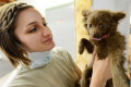 Dealing with Common Puppy Health Problems for Newbie Dog Owners