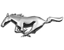 Mustangs (a poem)