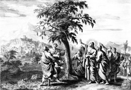Jesus Curses the Fig Tree. Mark 11:12-14