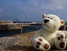 Teddy bear on the beach.
