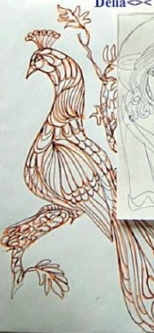 Original doodle of Peacock