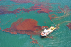 The effects of Oil Spills in our Wounded Home