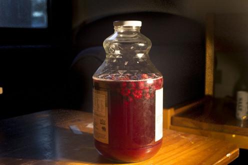 Homemade kombucha with berries