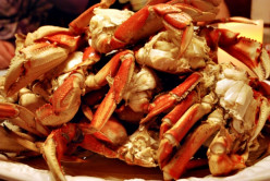 Dungeness Crab: A Missing Holiday Tradition