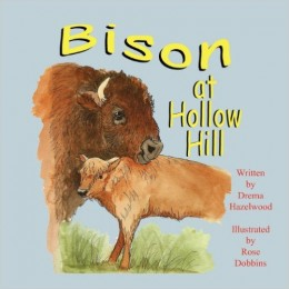 Bison at Hollow Hill by Drema Hazelwood