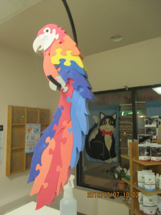 Macaw jigsaw puzzle is decoration in veterinarian office. - Photo by George Sommers