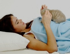 Therapy Using Cats: General Information and Cats as Co-therapists