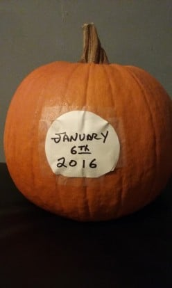Do you still have your pumpkin from Halloween sitting around your house today?