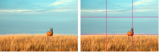 Every picture you take can be split into 3 parts, horizontally and diagonally.