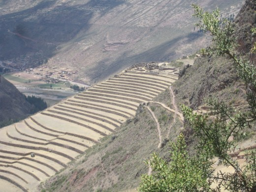Switchbacks and terraces  that were used to grow many of the herbs used for healing.