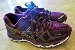 ASICS Women's GEL-Kayano 21 Running Shoe Review