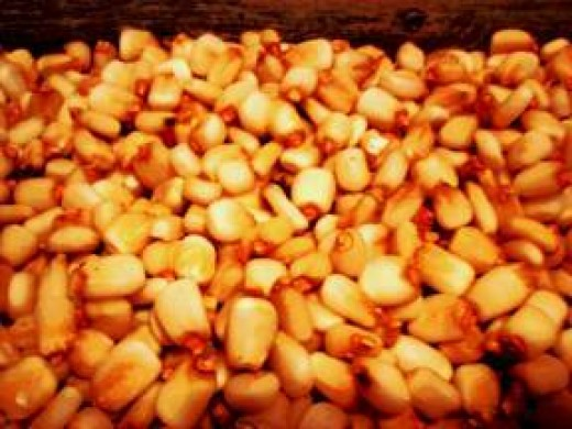 Hominy (comes in white and yellow varieties).
