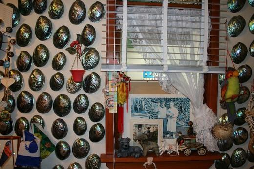 Paua shell house