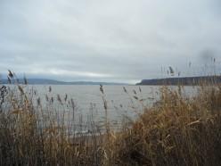 Hudson River Vignettes (a poem)