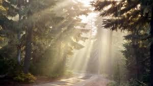 suns rays
