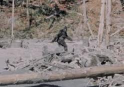 Bigfoot - Has He Been Found?