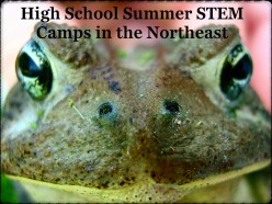 More Summer 2018 High School STEM Camps in the Northeast