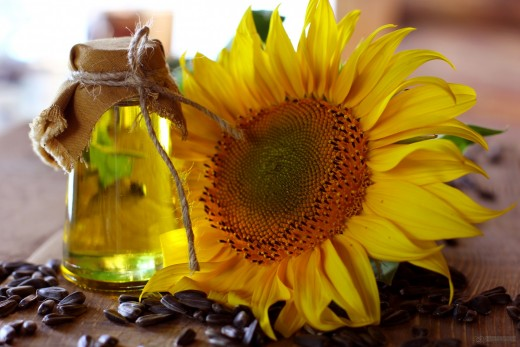Organic sunflower oil is a versatile product for skincare.
