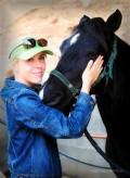 Animal healer seeks help reuniting mustang with the people who raised him