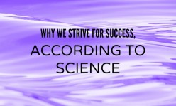Why We Strive for Success, According to Science